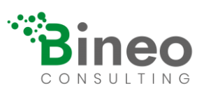 Bineo Consulting